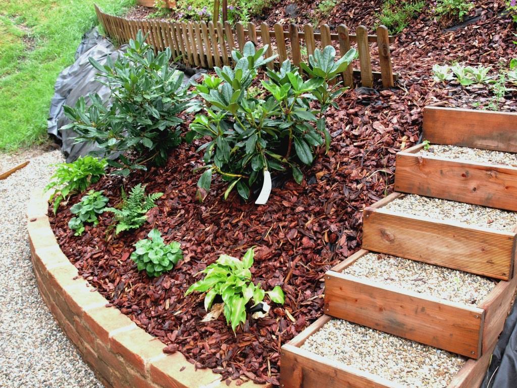 Meine pflanzenauswahl und tipps f r den schattengarten - Schattengarten gestalten ...